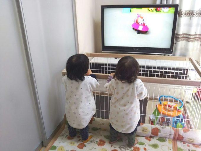 仲良く立ち見でテレビ観賞(テレビには近づかせないことに大成功!)